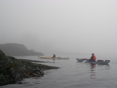 Kayaks in the Fog