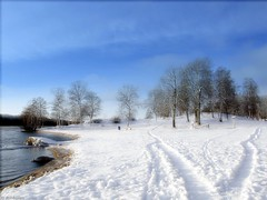 Winter beach (♥ B i b b i ♥) Tags: blue winter sky white snow cold tree beach strand vinter sweden stockholm himmel bluesky explore sverige snö träd 2007 blå vit blåhimmel interestingness37 i500 kallt kanaanbadet explore8feb07