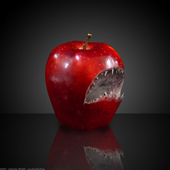 apple evolution-sharpple? (atomicshark) Tags: red stilllife food macro apple fruit photoshop fun shark scary fuji teeth interestingness1 bestviewedlarge tasty evolution freaky f30 finepix jaws bite interestingness2 reddelicious helluva interestingness5 interestingness10 i500 atomicshark sharpple