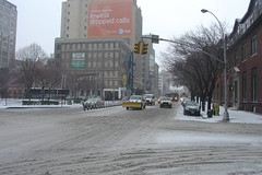 New York in the snow #8