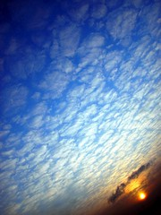 Sunday Morning in My Pajamas in the Snow (CaptPiper) Tags: sky clouds sunrise altocumulous feb18