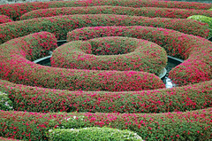 Garden by Getty.. (Julian E...) Tags: california flowers red flower green museum architecture clouds buildings garden losangeles tulips shapes getty umbrellas favoritegarden superhearts