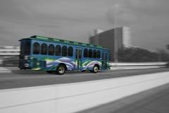 L_BWC_Public_transportation.jpg (KeeJoZ) Tags: blackandwhite bus colorful publictransportation florida panning clearwater eos400d