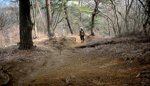 Trail run in Takao