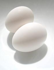 egg portrait (aloalo*) Tags: portrait food white egg