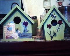 birdhouses3