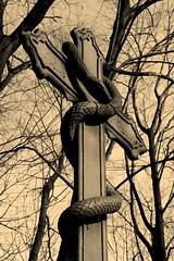 Demons In My Head ... . (Ewciak & Leto) Tags: sepia dark darkness cross snake vampire gothic evil fantasy legend canoneos350d mystic demons v401500 v101200 v76100 v501600 v601700 v701800 v201300 castlesdreams v301400 v801900 v9011000 v10001250 v12501500
