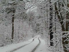 Snowy Dirt Road to my house (LisaNH) Tags: unature wtmwchallengewinner botgweeklychallengewinner