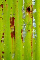 Corrugated Fence (Auntie P) Tags: abstract green fence rust peeling paint decay corrugated