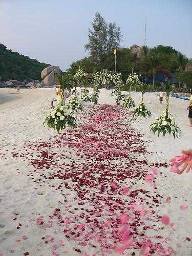 koh nangyuan wedding