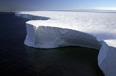 Icebergs and Global Warming