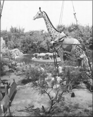 Jungle Cruise construction - by Tom Simpson