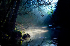 River Mist (tommy martin) Tags: uk winter england sunlight mist river landscape bravo lakedistrict cumbria abigfave