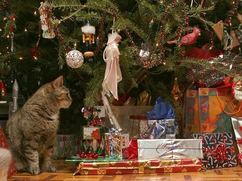 Joyeux Noël / Merry Christmas