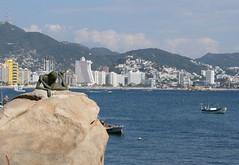 Pensador... (Esparta) Tags: mexico acapulco mexico:state=guerrero mexico:estado=guerrero mexico:state=gro mexico:estado=gro