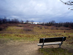 Time To Reflect (suesue2) Tags: michigan naturetrail stonycreekmetropark abigfave