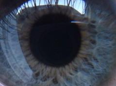 MyEye (fuzzinator) Tags: eye closeup fuzzy auge