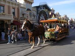Empty Disney (4)