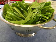 20070112 turnip greens