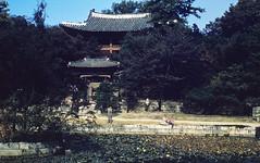 1959 Seoul, Korea ~ Biwon Secret Garden at Changdeokgung Palace (Smothers52) Tags: pond palace korea seoul pavilion secretgarden 1959 biwon changdeokgung billsmothers karensmothers