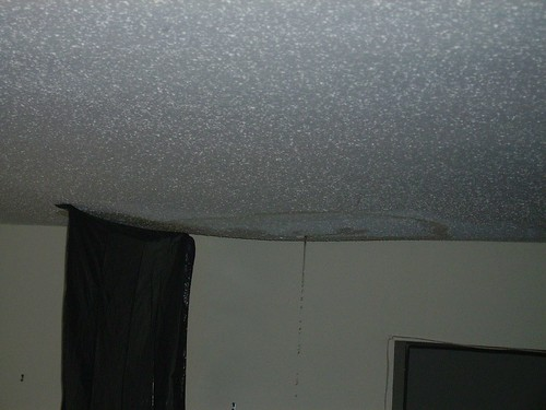 Ceiling Leak 004