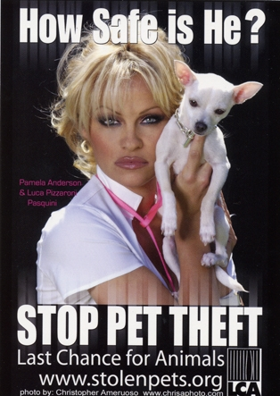 LCA - National Pet Theft Awareness Day, 2001 (Pam Ad)