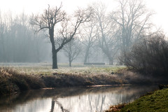 Grantchester Meadows (tad2106 - Trudie Davidson Photography) Tags: winter cambridge england mist english d50 river countryside nikon frost meadow cambridgeshire rivercam grantchester grantchestermeadows englishvillages