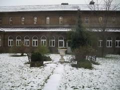 Snowfall_03