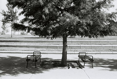 two benches (Kansas Image Maker) Tags: film blackwhite kansas wichita arista konicatcx 40mm18