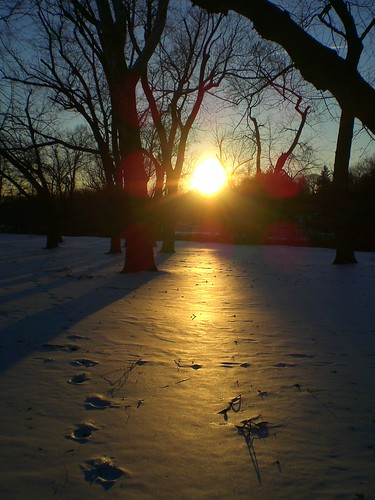 Sunset over snow covered field at Bronx River Parkway Park.