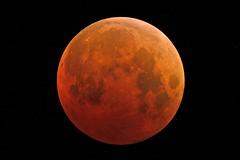 Una eclissi di Luna da non perdere