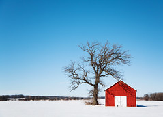 Little Red Shed (Todd Klassy) Tags: christmas travel blue winter red sky white snow cold color colour tree art tourism ice field horizontal wisconsin composition barn rural season outdoors boards midwest scenery holidays snowy farm painted branches horizon country farming shed perspective bluesky visit simplicity americana copyspace leafless simple frigid oaktree hue wi redbarn clearsky selectivefocus winterlandscape dairyfarm stoughton stockphotography redshed royaltyfree scenicdrive agribusiness agritourism ruralscene rightsmanaged leaflesstree wisconsinwinter barndoors rurallandscape winterfarming stoughtonwisconsin ruralwisconsin wisconsinfarm winterinwisconsin wisconsinphotographer horizonoverland wisconsinlandscape toddklassy wisconsinfarming