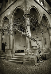 white tree of gondor (maxivida) Tags: bw tree castle sepia germany dry courtyard story lotr 2550fav fantasy heidelberg pillars baden maxivida tolkien gondor