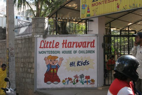 Little Harward hi kids
