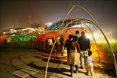 2007台灣燈會在嘉義181