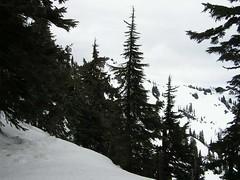 Out destination today - Mt. Margaret
