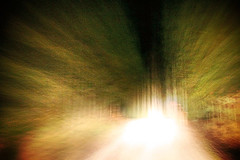 Offroad Driving 6 - by Iguana Jo