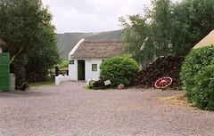 ireland0054 (Moggiedog) Tags: ireland peat pony