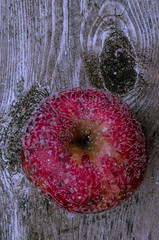 Apple Frost... (Kat Hatt) Tags: frost red apple wood knothole napanee ontario kathleenhatt