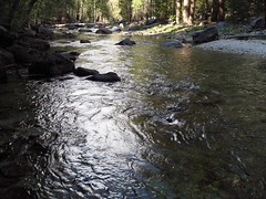 Deep Pools (SanJuanJon) Tags: bestnaturetnc06