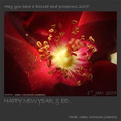 Happy New Year - 2007 (Jamash) Tags: pakistan flower art nature rose ilovenature year eid newyear karachi jamal happynewyear 2007 jamash ashiqain jamalashiqain