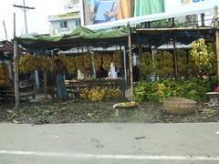 Bangladesh, Dhaka banana shop