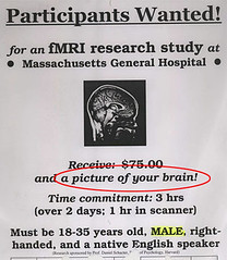 fMRI recruitment poster