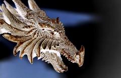 The White Dragon (Ewciak & Leto) Tags: dark dragon darkness gothic fantasy figure legend canoneos350d annemccaffrey pern v401500 v101200 v76100 v501600 v601700 v201300 castlesdreams v301400 toysfun