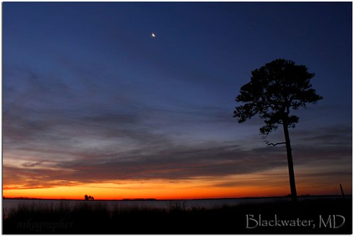 Sunrise @ Blackwater, w/ Moon