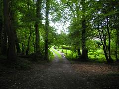 Near Arquennes, Belgium (Koos_Fernhout) Tags: geotagged belgium belgique strictly belgien wallonie hainaut belgie arquennes koosfernhout geo:lat=50576362 geo:lon=4277372