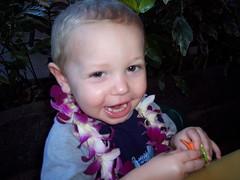 hawaii06 332