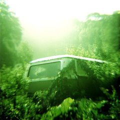 Asiana ~ Nature Bus (Andy Gosling) Tags: old uk england bus green abandoned 120 nature overgrown vw mediumformat volkswagen square xpro crossprocessed rust diana devon forgotten vegetation vehicle van wreck clone camper quarry asiana chudleigh type2 typeii andygosling