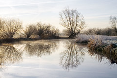 Grantchester Meadows in Winter (. Andrew Dunn .) Tags: uk morning trees cambridge england mist reflection tree river landscape still bravo frost britain willow silhoutte tranquil eastanglia rivercam thefens grantchester newnham interestingness10 grantchestermeadows i500 cy2 challengeyouwinner