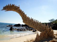 sand dinosaur profile (sandcastlematt) Tags: sculpture castle beach sand dinosaur puertorico secretbeach sandcastle vieques sandsculpture dripcastle dripsculpture